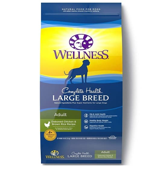 great dane puppy food recommendations 2019