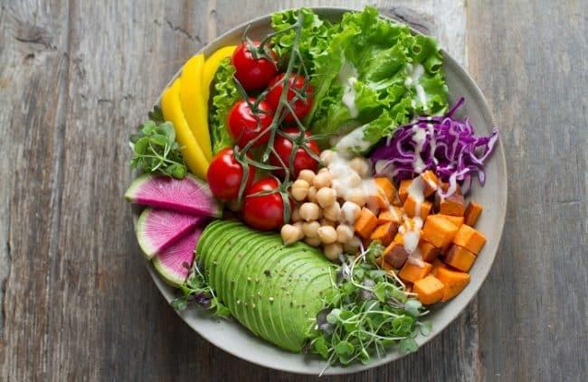 best vegan food for dogs